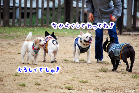 131103_yuasa2.jpg
