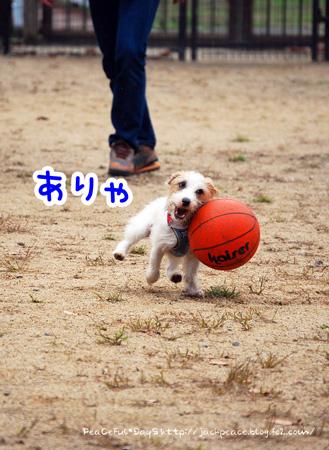 131103_yuasa20.jpg