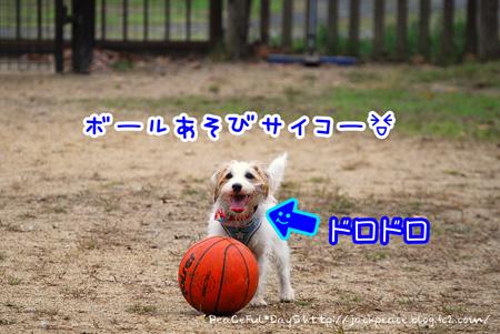131103_yuasa23.jpg