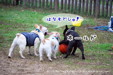 131103_yuasa8.jpg