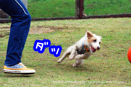 131106_yuasa3.jpg