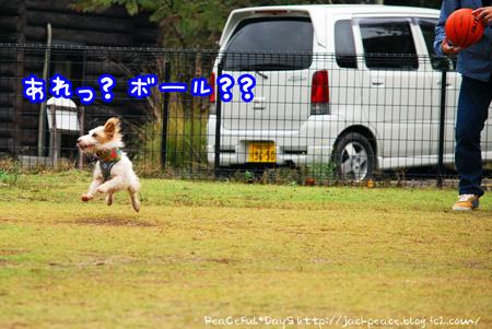 131106_yuasa4.jpg