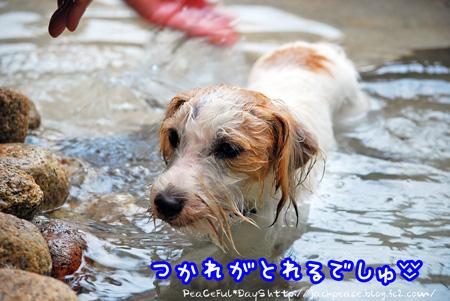 131106_yuasa7.jpg