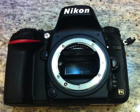 NikonD60876.jpg