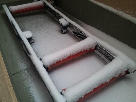 雪の日は読書でも