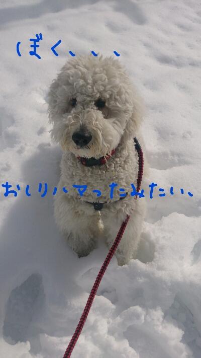 fc2_2014-02-10_21-58-33-777.jpg