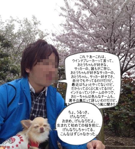 new_257179453655.jpg