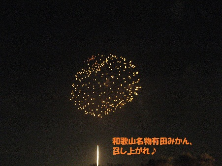 IMG_0924_20121008225011.jpg