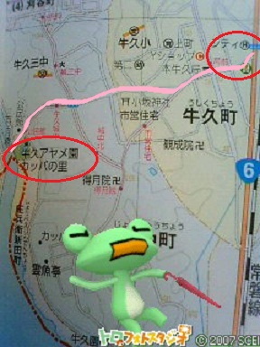 image177_20120613211312.jpg