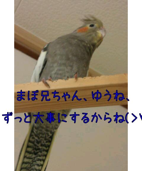 20130328-223820.jpg