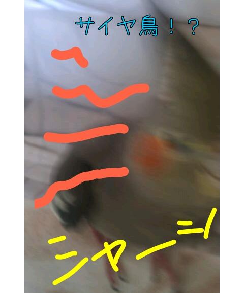 20130511-232438.jpg