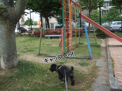 2013062522120059e.jpg