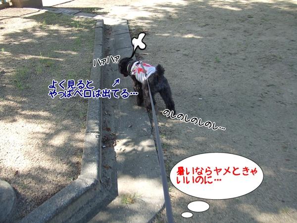 20130722230354c33.jpg
