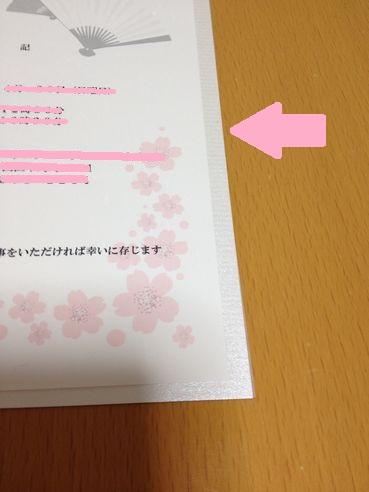 IMG_2095.jpg