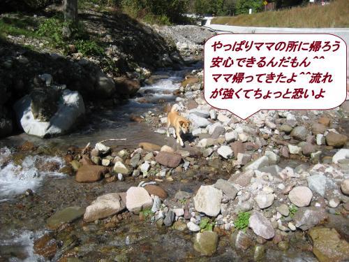 IMG_1491_convert_20131031074514.jpg