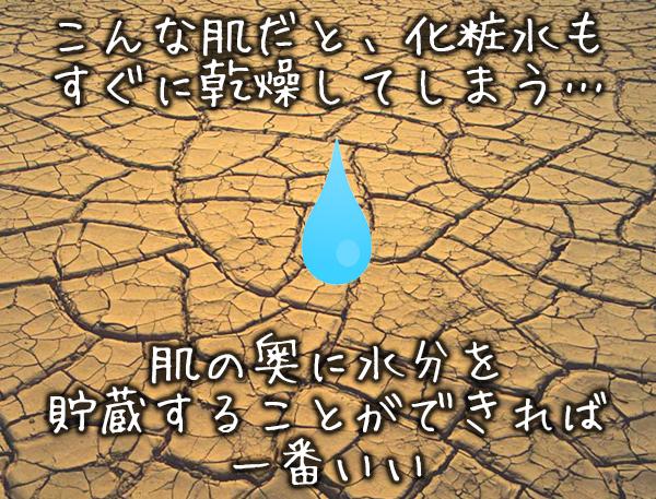 肌に水分を貯蔵する