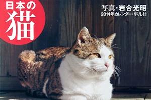 日本の猫2014カレンダー