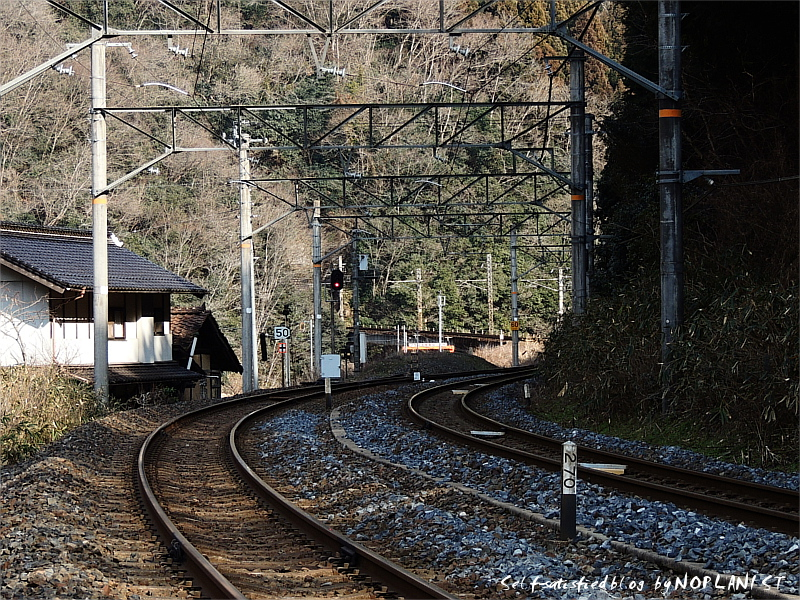 nunohara_DSCN0472.jpg