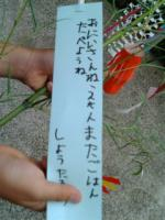securedownload_20120707183944.jpg