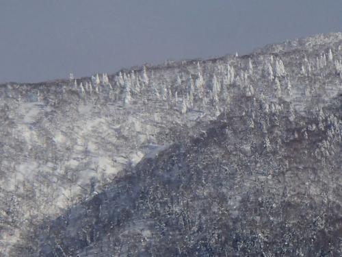 向かいの山の巨大樹氷