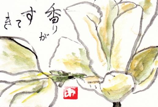 白IMG_0004