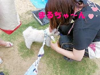 S_P1020015.jpg