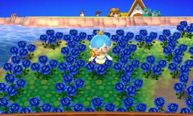 青いバラ あつまれどうぶつの森 島暮らし6カ月目でやっと青バラが咲きました! 【あつ森日記#136】