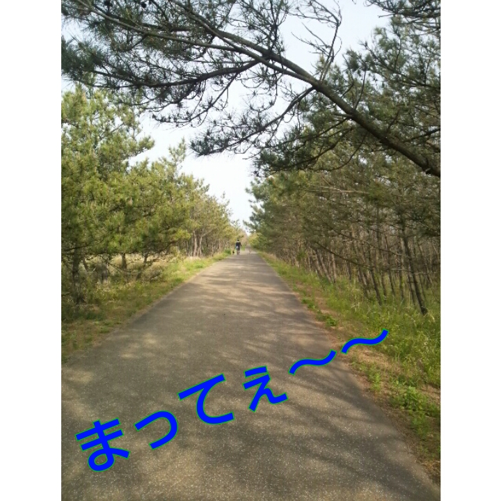 PhotoGrid_1367293541827.jpg