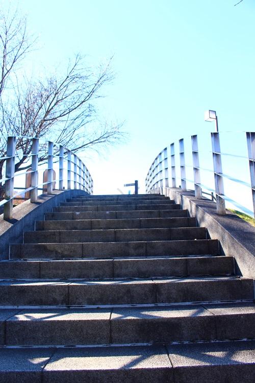 みさか桃源郷公園でお散歩