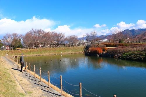 桃源郷公園8