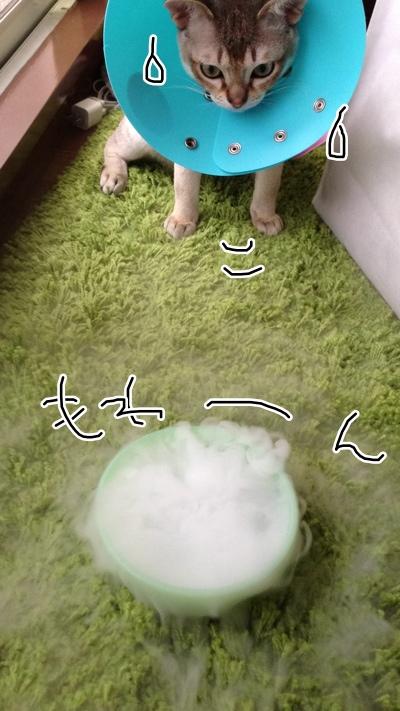 fc2blog_20130711141056807.jpg