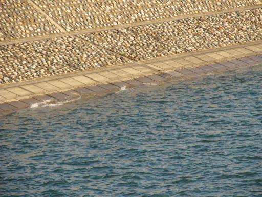 20120407・多摩湖22