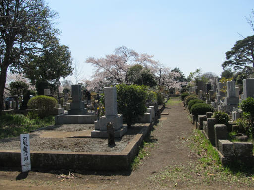 20120408・多磨霊園02