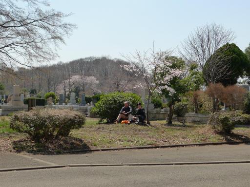 20120408・多磨霊園L08