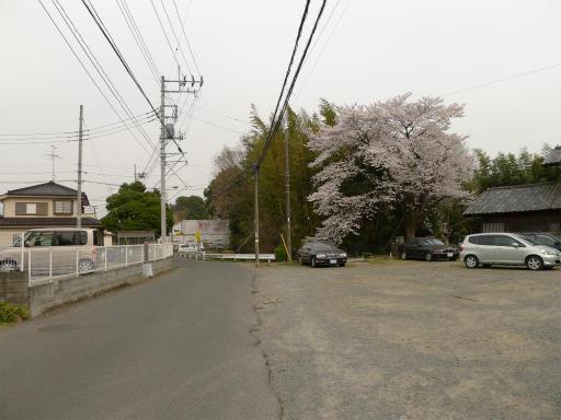 20120410・近所の桜1-05