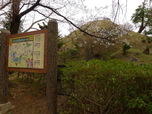 20120410・近所の桜2-06
