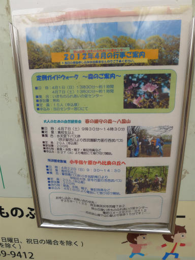 20120410・近所の桜2-05