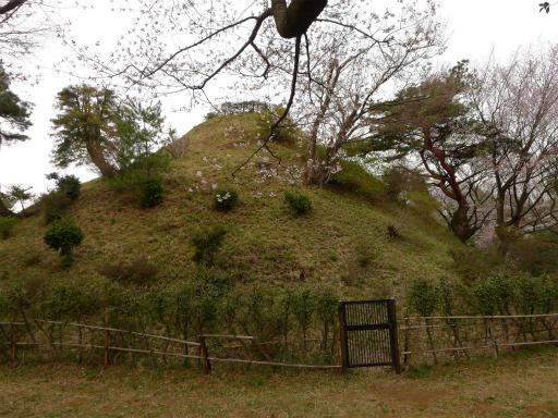 20120410・近所の桜2-18