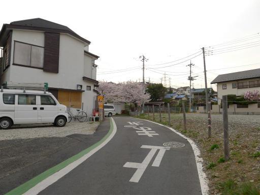 20120410・近所の桜3-08