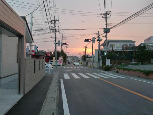 20120410・近所の桜3-18