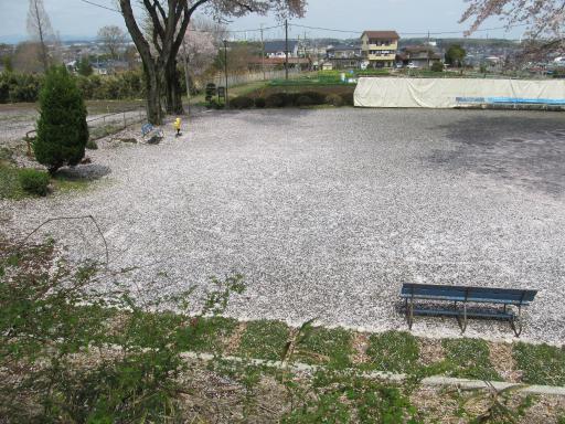 20120415・緑の森・空06