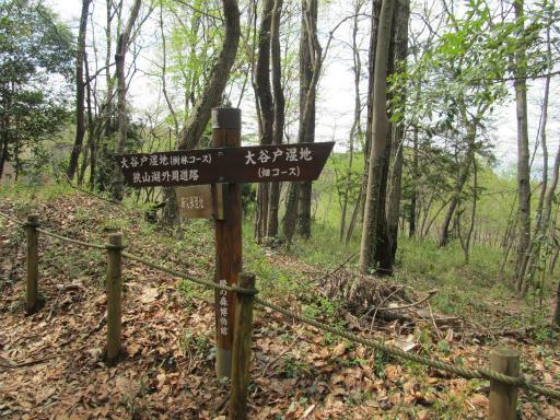 20120415・緑の森1-07