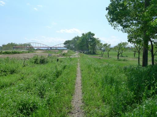 20120505・安比奈線散歩4-12
