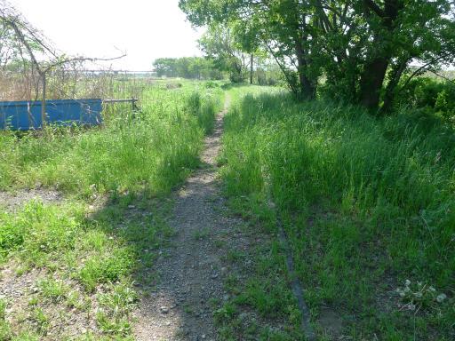 20120505・安比奈線散歩4-11