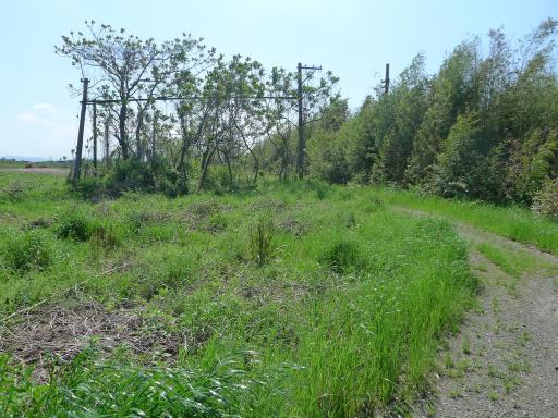 20120505・安比奈線散歩4-18