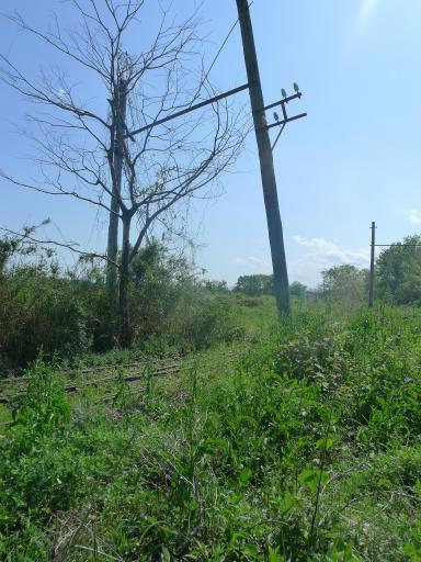 20120505・安比奈線散歩4-24