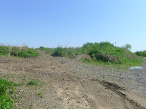 20120505・安比奈線散歩4-27