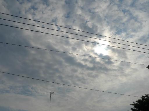 20120521・金環日蝕16・8:04