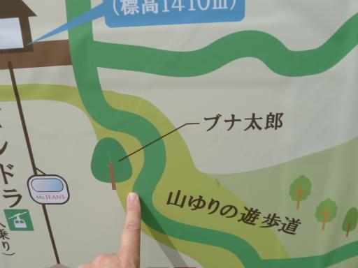 20120603・塩原7-09