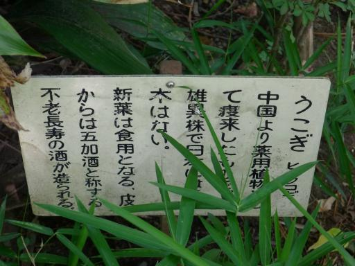 20120607・牧野2-11中